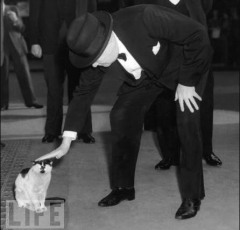 Winston Churchill and his cat