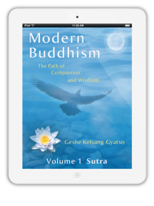 Modern Buddhism book on ipad