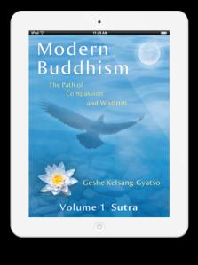 Modern Buddhism book on ipad