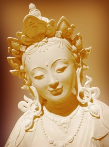 Tara protecting living beings