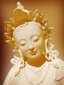 Tara protecting living beings