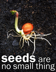 seeds are no small thing