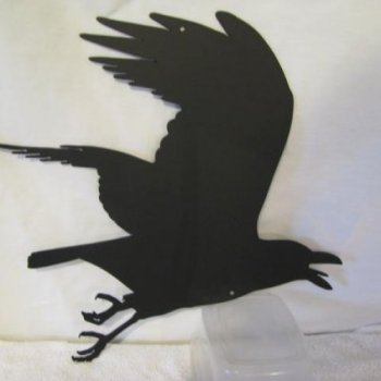 flying crow