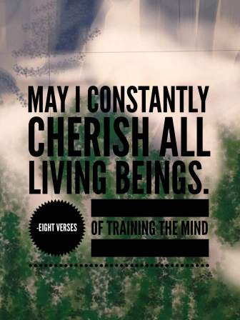 may-i-constantly-cherish