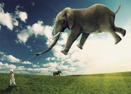dream-like-elephant
