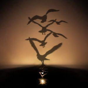 Shadow-Projection-Night-Light