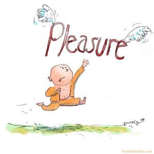 fleeting pleasure
