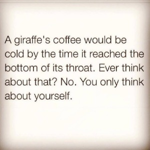 self-cherishing giraffe