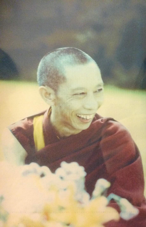 Modern Buddhism StudyPrograms