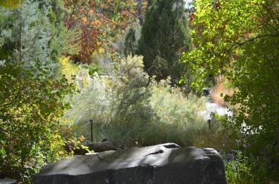 rock in garden