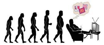 sapiens 3